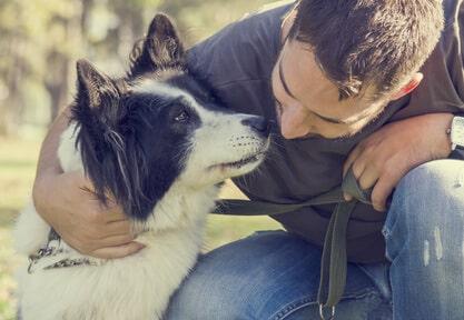Master assistente veterinario: il percorso di studi per una figura professionale sempre più richiesta