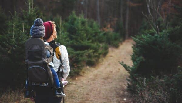 I benefici del Trekking